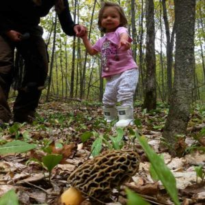 Teaching Morel Mushroom Hunting