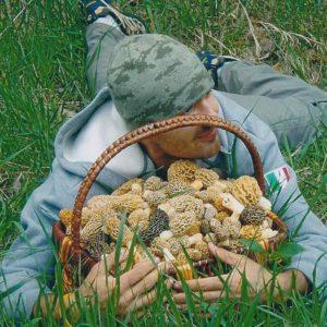 Morel Mushroom Basket