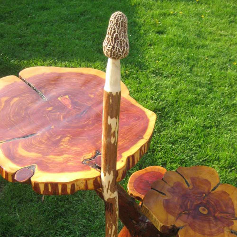 Morel Mushroom Sticks