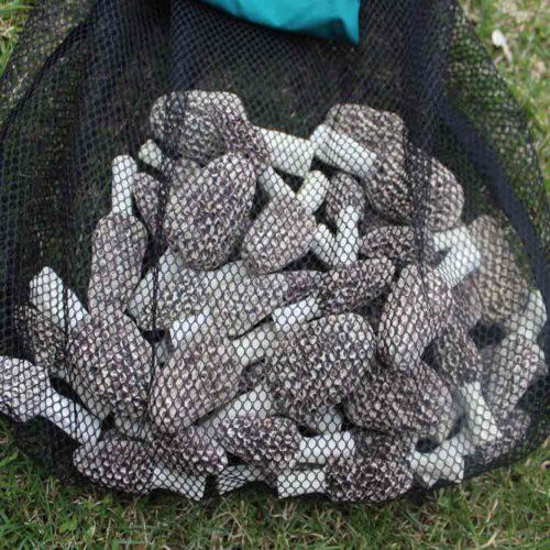 Mushroom Hunting Mesh Bag