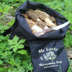 My Lucky Shrooming Bag