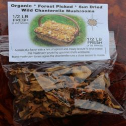 Chanterelle Mushrooms For Sale