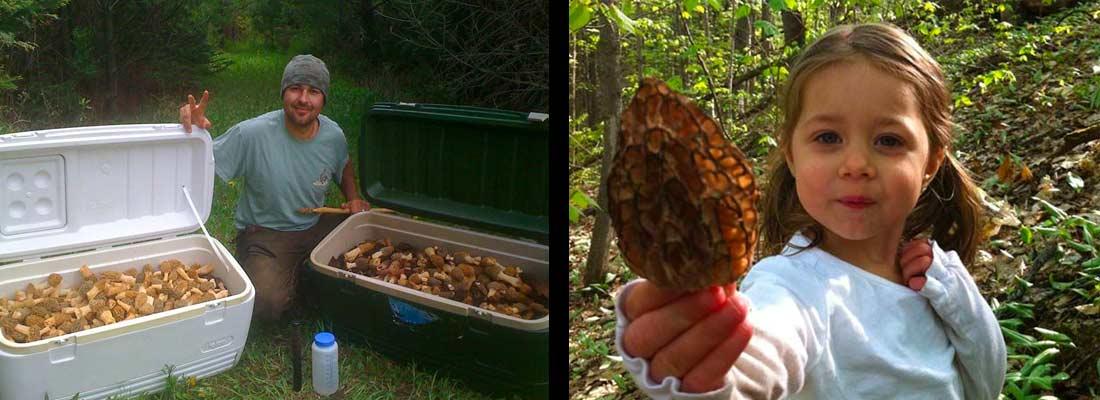 mushroom-gear-2