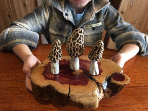 Carved Morel Mushrooms