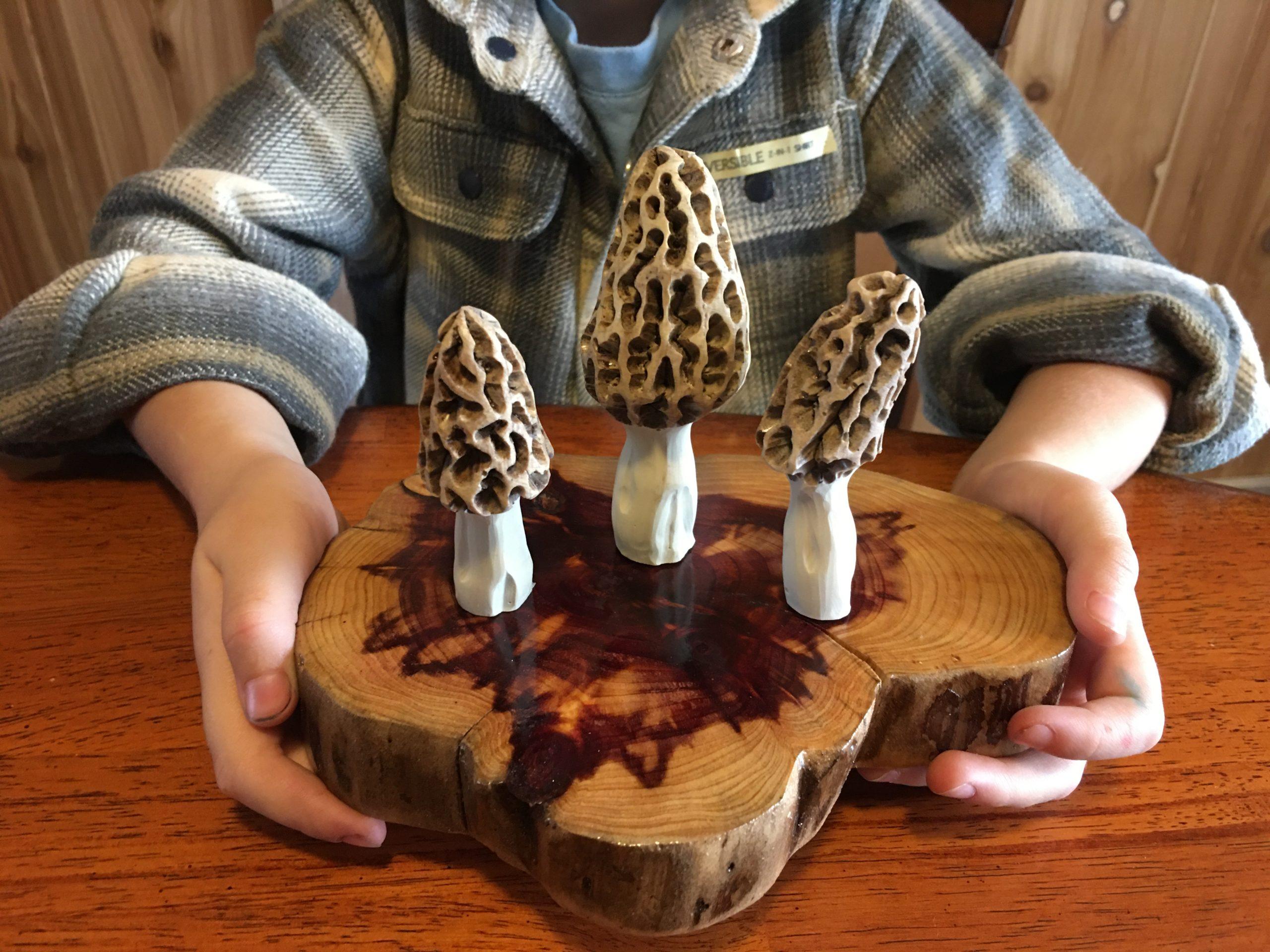 Morel Mushroom Plaque
